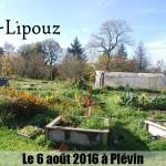 Oasis Tilipouz