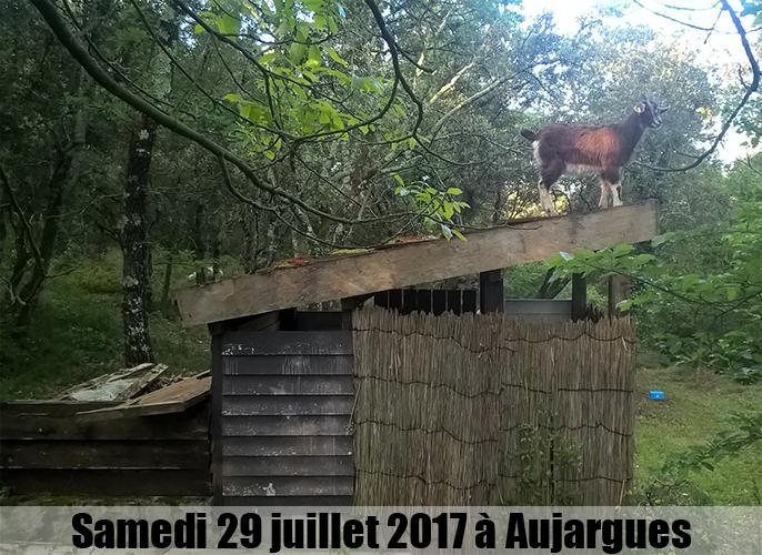 Etape de Vauvert à Aujargues