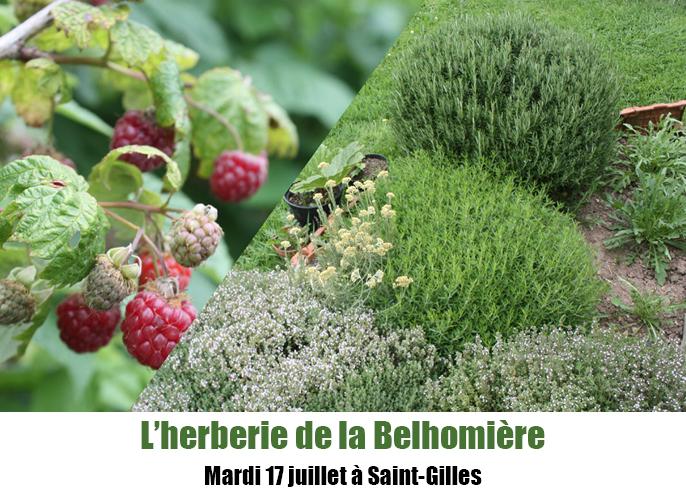 Etape de Marchesieux à Saint-Gilles