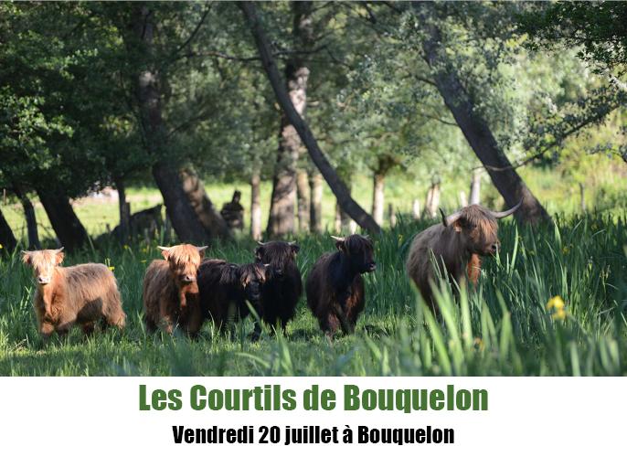 Etape de Saint-Pierre-Azif à Bouquelon