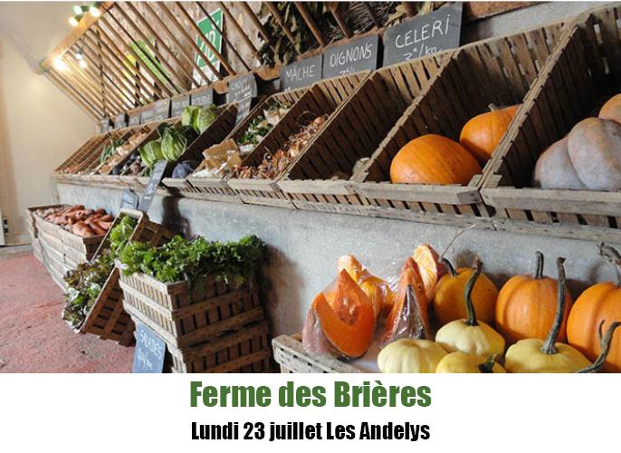 Etape de Sotteville les Rouen à Les Andelys