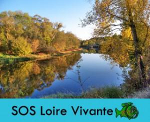 SOS-loire-vivante
