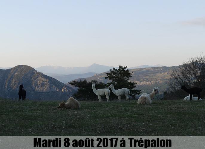 Etape de Francillon / roubill à Trépalon