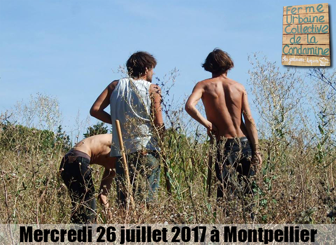 Etape de Montpellier à